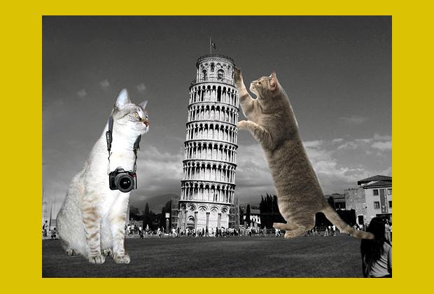 Olaszország, pisai ferde torony (furrrocious-forms.tumblr.com)