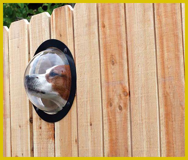 kutyabarát kerítés