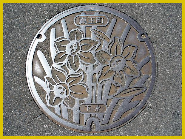 tavaszi aknafedél nárciszokkal - Japán