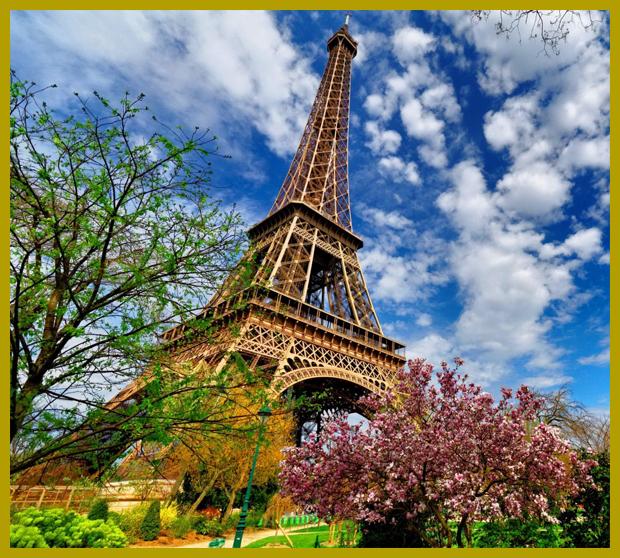 virágzó magnóliafa és a 125 éves Eiffel-torony, tavasz Párizsban