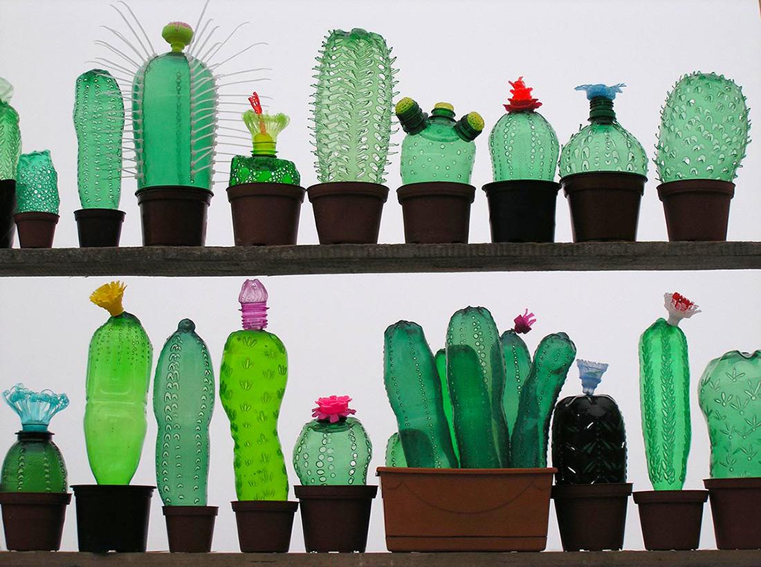 kaktuszok PET palackokból