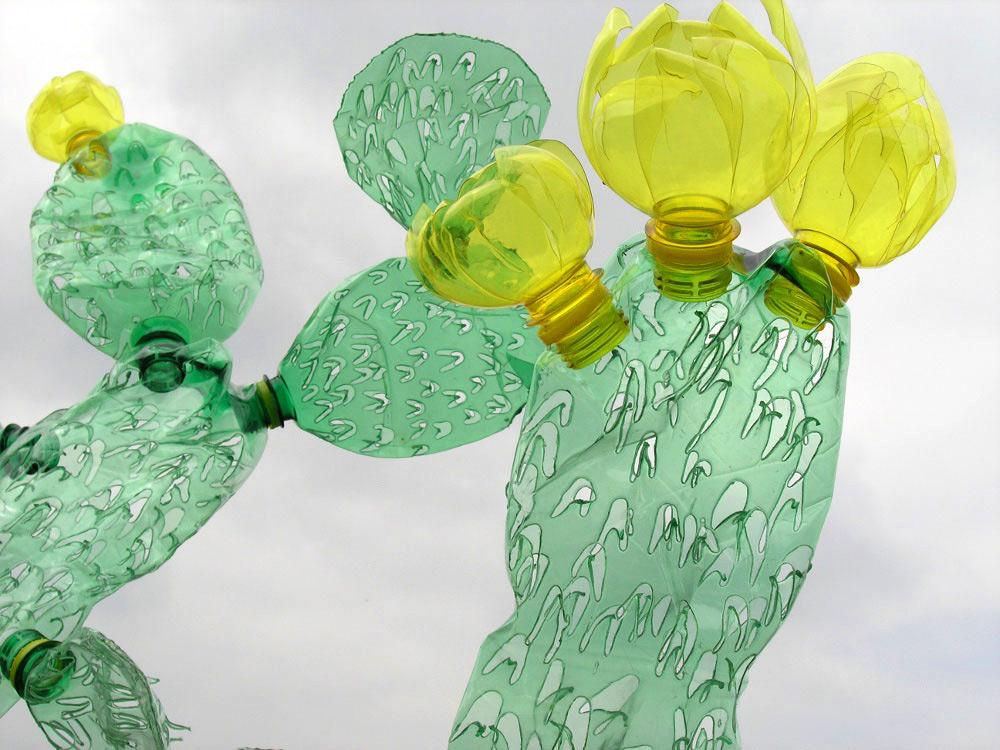 virágzó PET palack kaktuszok