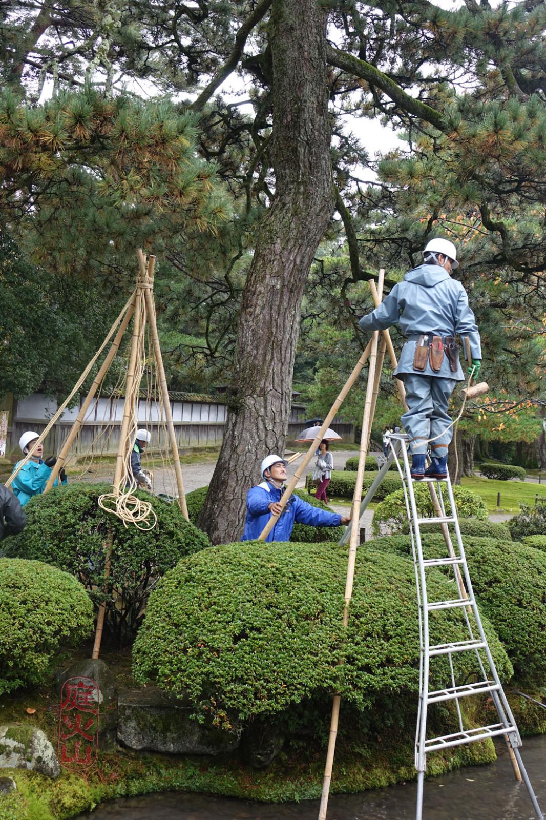 japán park - készülődés a télre