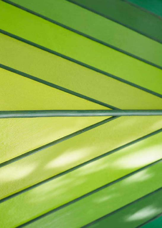 zöld a Zöldben - kilátó - Japán