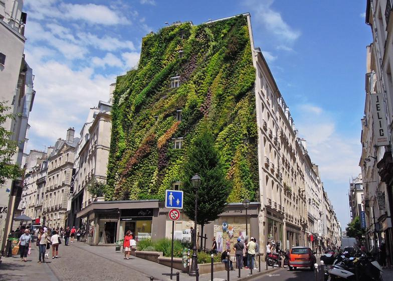 zöldfal Párizs