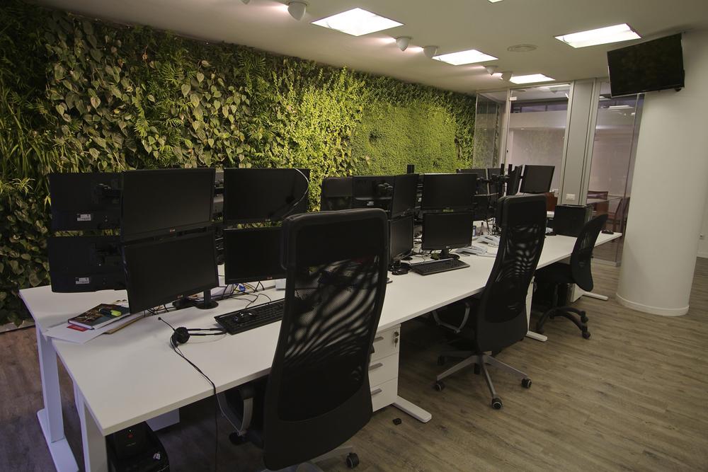 zöldfal iroda